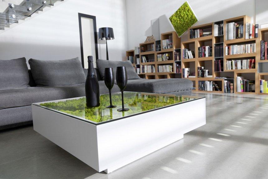 Стабилизированный мох ягель в интерьере и мебели. Фитостена