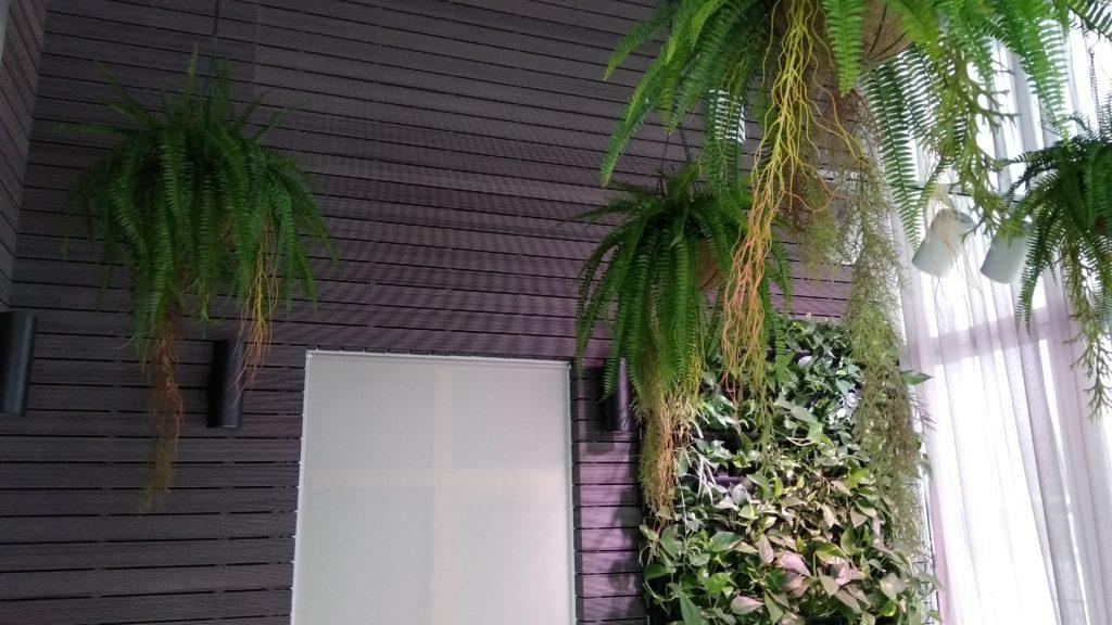 Вертикальное озеленение в частном доме. Фитостена из фитомодулей Flat Wall