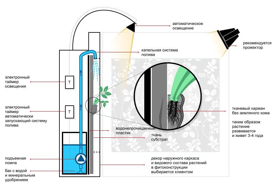 Принципиальная схема фитостены. Вертикальное озеленение. Автополив